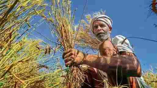 Farmers Loan Waiver Scheme